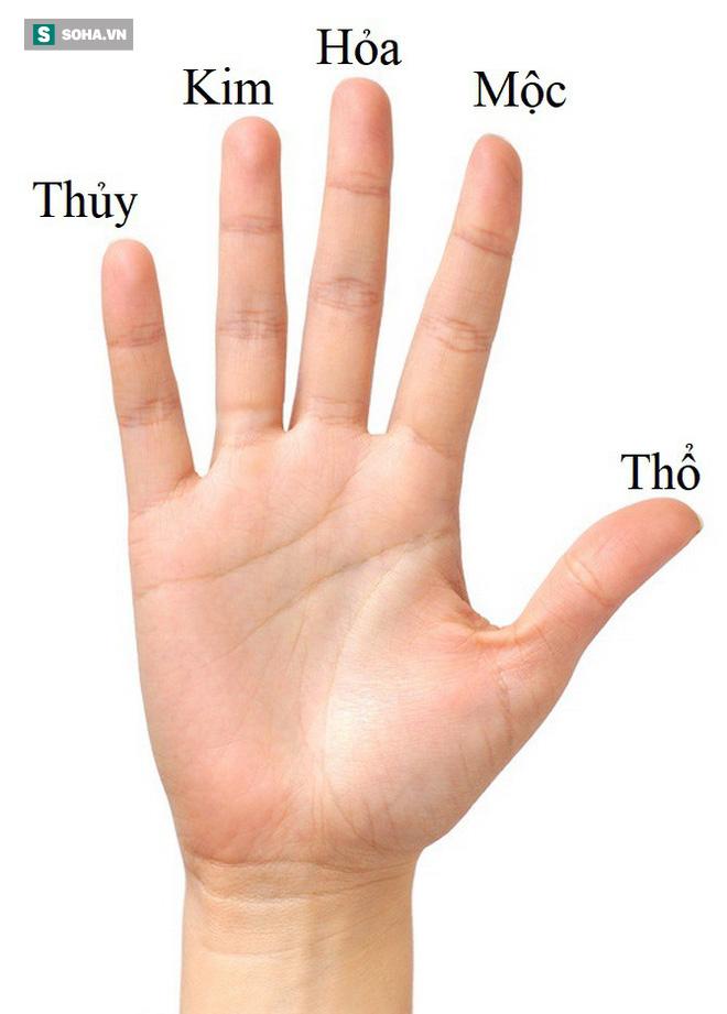 Khoảng cách giữa các ngón tay sẽ tiết lộ bạn sống độc lập hay phụ thuộc - Ảnh 1.