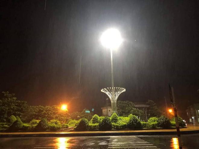 Bão đổ bộ trong đêm, cây ngã đổ la liệt, nhiều địa phương ở Phú Yên, Bình Định mất điện - Ảnh 2.