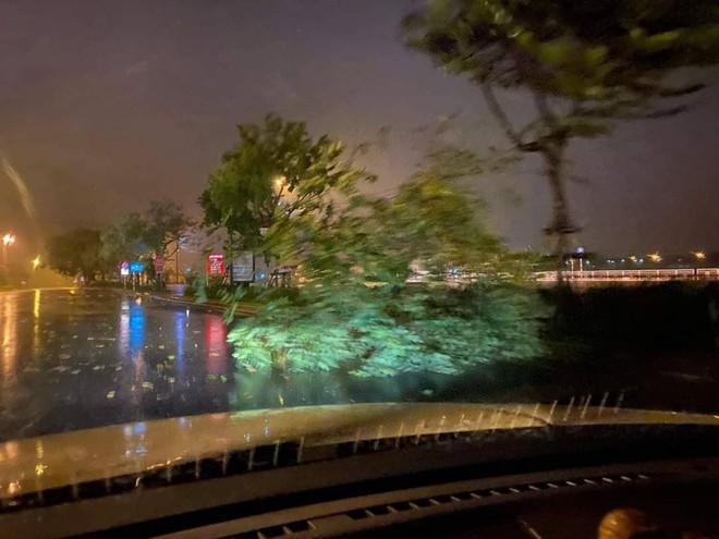 Bão đổ bộ trong đêm, cây ngã đổ la liệt, nhiều địa phương ở Phú Yên, Bình Định mất điện - Ảnh 5.