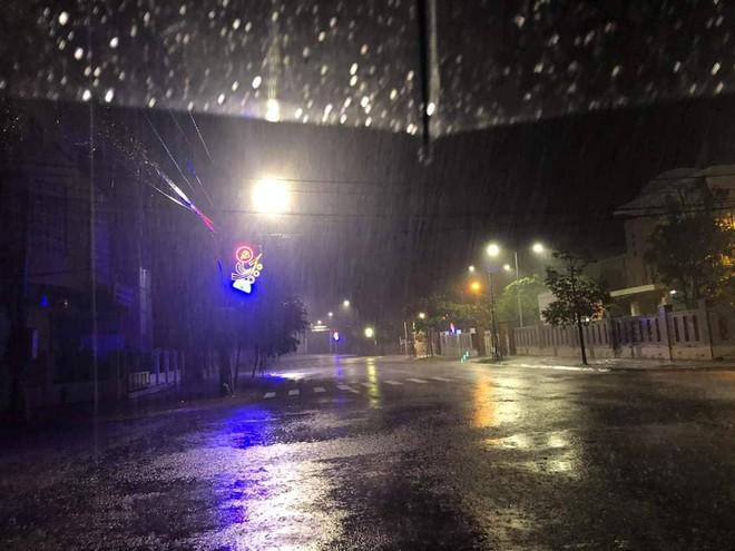 Bão đổ bộ trong đêm, cây ngã đổ la liệt, nhiều địa phương ở Phú Yên, Bình Định mất điện - Ảnh 3.