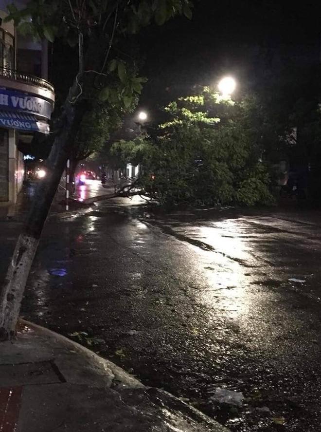 Bão đổ bộ trong đêm, cây ngã đổ la liệt, nhiều địa phương ở Phú Yên, Bình Định mất điện - Ảnh 6.