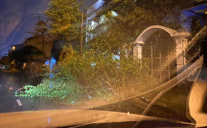 Bão đổ bộ trong đêm, cây ngã đổ la liệt, nhiều địa phương ở Phú Yên, Bình Định mất điện
