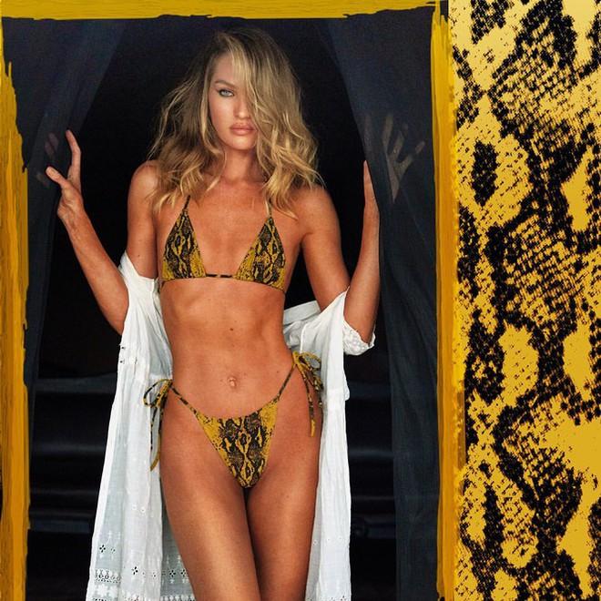 Ngắm biểu tượng gợi cảm Nam Phi diện bikini 'thiêu đốt' ánh nhìn - ảnh 2