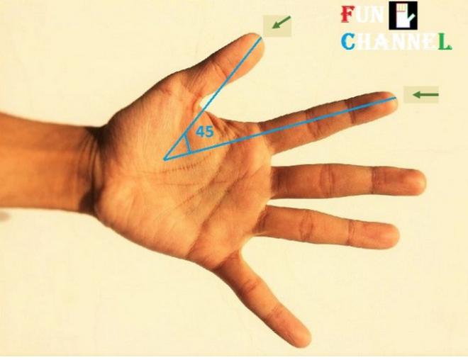 Khoảng cách giữa các ngón tay sẽ tiết lộ bạn sống độc lập hay phụ thuộc - Ảnh 2.