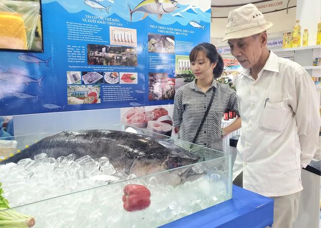 Cá ngừ đại dương nặng 30kg, thủy quái dài cả mét gây sốt tại chợ hải sản Hà Nội  - Ảnh 1.