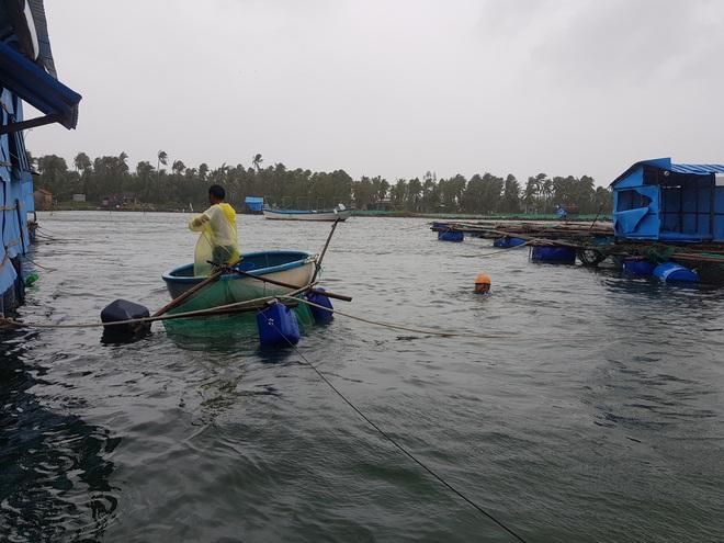 Người dân chạy đua với bão Nakri, vớt tôm cá trước giờ bão đổ bộ - Ảnh 4.