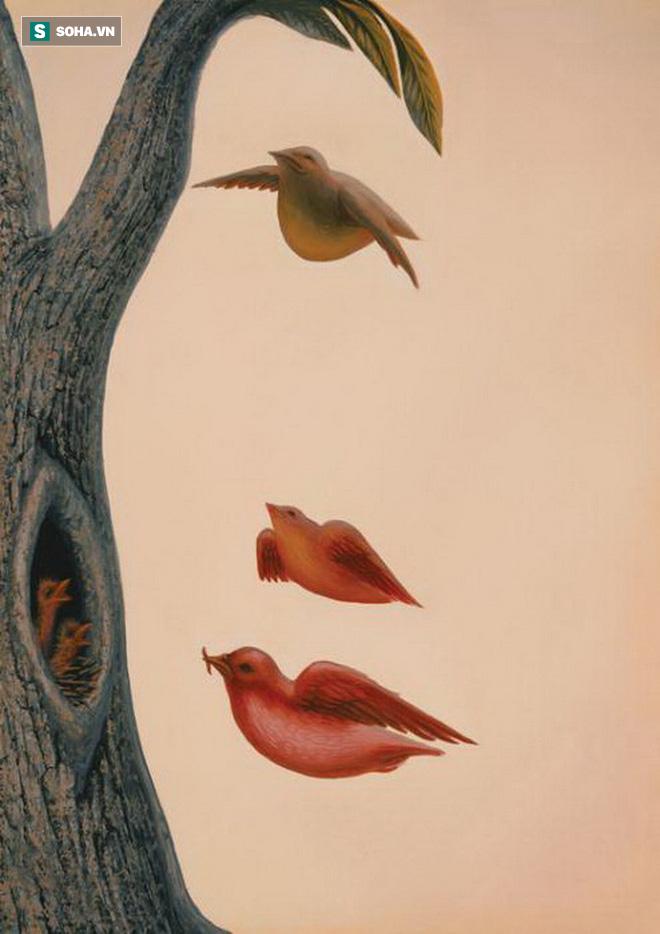 Nếu nhìn thấy tổ chim trên cây trước tiên thì bạn đang lo ngại về tài chính - Ảnh 1.