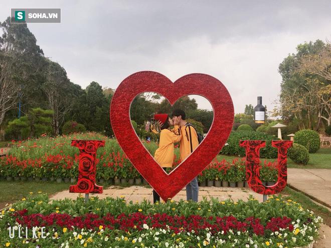 Bình luận dạo trên mạng xã hội, thanh niên cưới được vợ kém 6 tuổi ở cách xa 1600km - ảnh 4