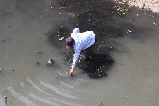 Sau Tô Lịch, bảo bối Nhật Bản được giới thiệu làm sạch hồ nước đọng - Ảnh 1.