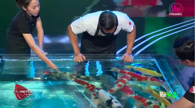 Siêu trí tuệ: Người đàn ông bịt mắt, truy tìm cá Koi bạc tỉ khiến tất cả không ngừng hồi hộp - ảnh 6