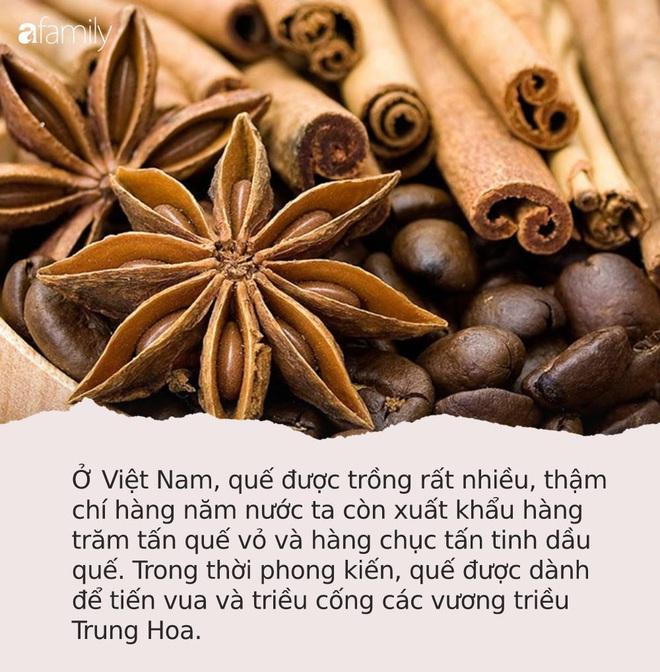 Tốt ngang nhụy hoa nghệ tây, ở Việt Nam có loại gia vị được mệnh danh là TỨ BẢO của Đông y, trị bệnh hay dưỡng nhan đều xuất sắc - Ảnh 1.