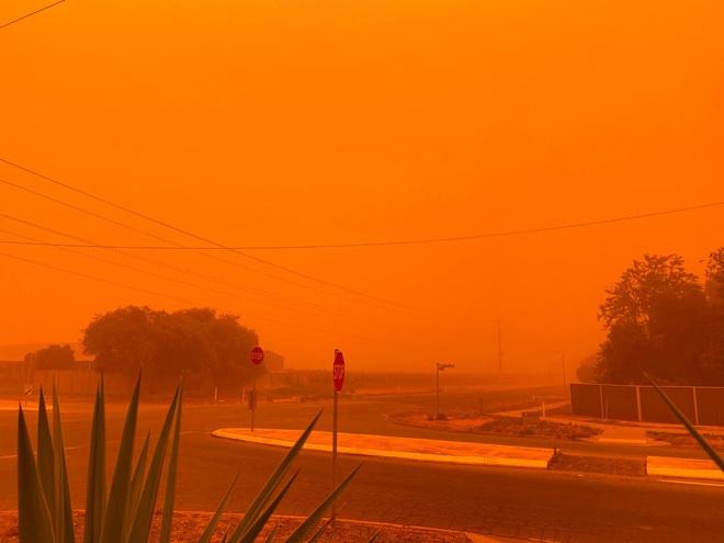 24h qua ảnh: Bầu trời ở Australia chuyển màu cam vì cháy rừng - Ảnh 2.