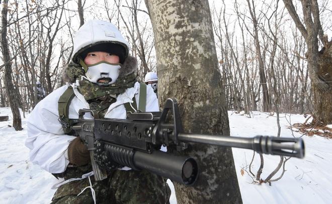 Khám phá vũ khí mệnh danh SCAR Hàn Quốc: Nguyên mẫu từng bị quân đội Mỹ bỏ quên? - Ảnh 1.
