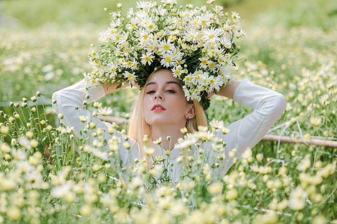 Thiếu nữ phương Tây khoe sắc giữa đồng hoa hoạ mi Hà thành - Ảnh 4.