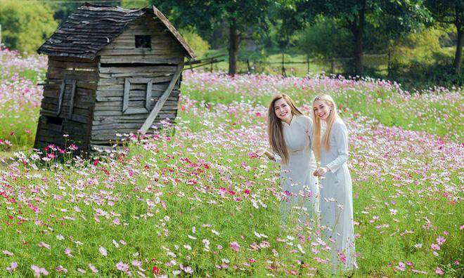 Thiếu nữ phương Tây khoe sắc giữa đồng hoa hoạ mi Hà thành - Ảnh 6.
