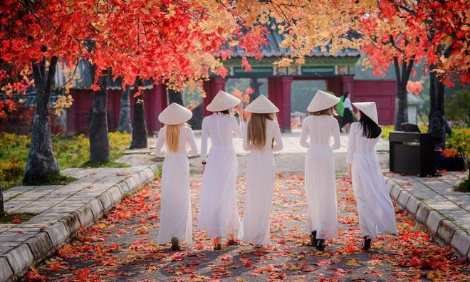 Thiếu nữ phương Tây khoe sắc giữa đồng hoa hoạ mi Hà thành - Ảnh 8.