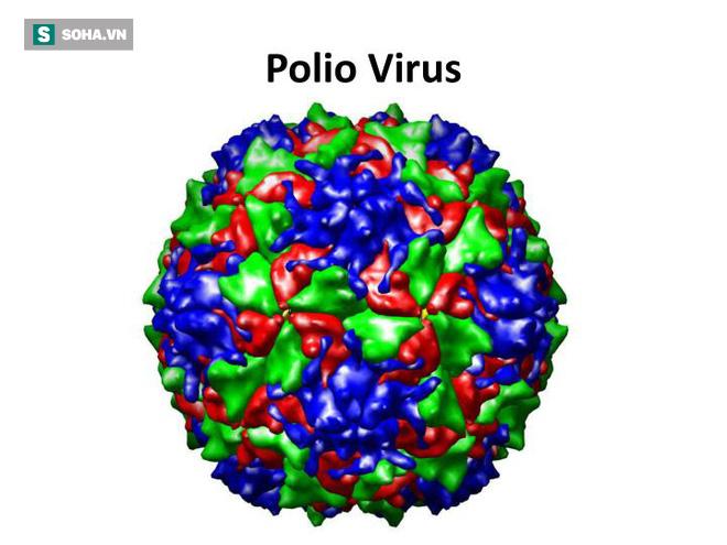 Báo động: Dịch bại liệt đã quay trở lại Philippines - Ảnh 1.