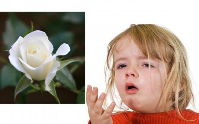 7 bài thuốc chữa ho hiệu quả cho trẻ trong mùa lạnh - Ảnh 6.