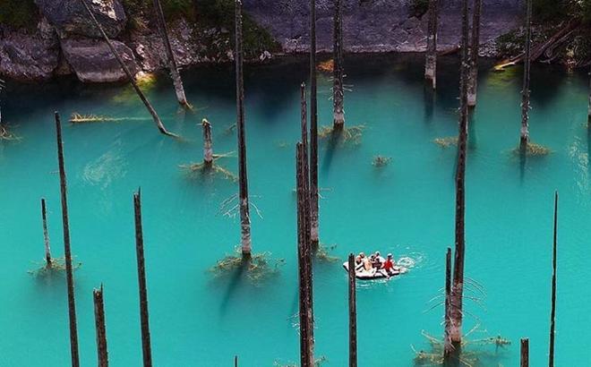 """Giải mã bí ẩn: Hồ nước kỳ ảo """"siêu thực"""" hô biến cây mọc ngược dưới đáy"""