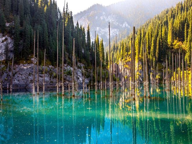 """Giải mã bí ẩn: Hồ nước kỳ ảo """"siêu thực"""" hô biến cây mọc ngược dưới đáy - Ảnh 2."""