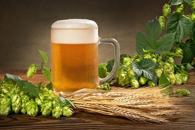 Phát hiện thần dược đẩy lùi cao huyết áp, tiểu đường trong... bia - Ảnh 1.