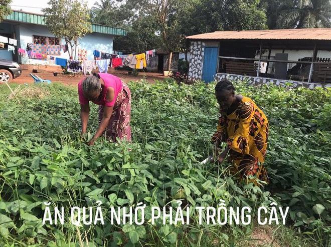 Nữ sĩ quan mũ nồi xanh Việt đưa thành công rau muống, bí, dền, mồng tơi vào CH Trung Phi ra sao? - Ảnh 4.