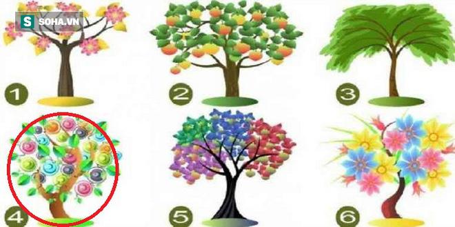 Cái cây bạn chọn sẽ đại diện cho tiềm năng lớn nhất của bản thân - Ảnh 4.