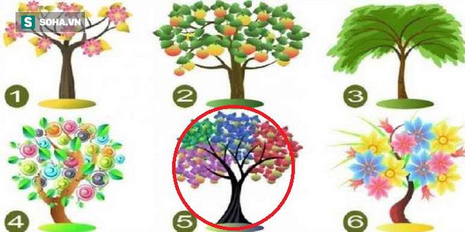 Cái cây bạn chọn sẽ đại diện cho tiềm năng lớn nhất của bản thân - Ảnh 5.