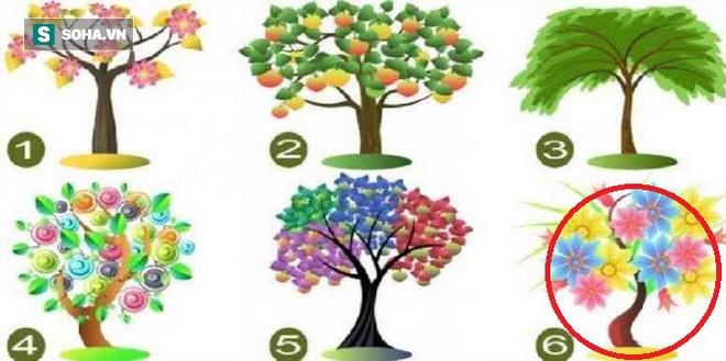 Cái cây bạn chọn sẽ đại diện cho tiềm năng lớn nhất của bản thân - Ảnh 6.