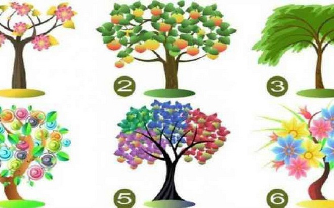 Cái cây bạn chọn sẽ đại diện cho tiềm năng lớn nhất của bản thân