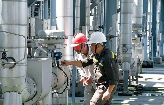 Chi tiết dự án nhà máy xơ sợi Đình Vũ nợ hơn 7.800 tỷ đồng - Ảnh 4.