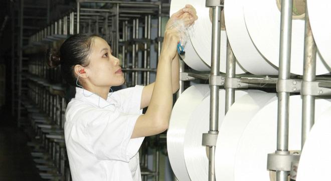Chi tiết dự án nhà máy xơ sợi Đình Vũ nợ hơn 7.800 tỷ đồng - Ảnh 6.