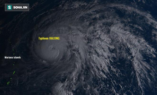 Song bão nguy hiểm ở Tây Thái Bình Dương: Bão Hạ Long tăng cấp siêu bão, Biển Đông sắp hứng bão to - Ảnh 4.
