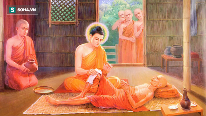 Nhất quyết làm sư, 6 tháng sau gặp chuyện: Đức Phật hỏi 3 câu khiến người đàn ông vỡ lẽ - ảnh 2