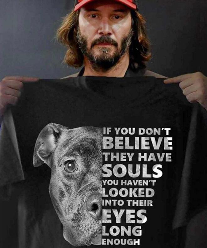 Sát thủ John Wick: Yêu chó điên cuồng trên phim còn sự thật ngoài đời ra sao? - Ảnh 6.
