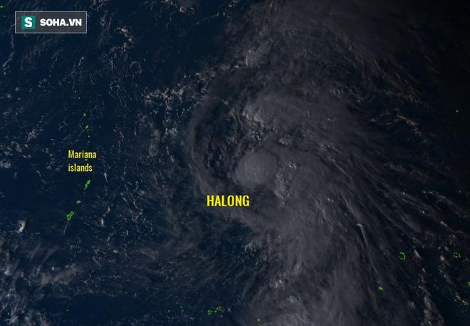 Xuất hiện bão Hạ Long ở Tây Thái Bình Dương: Tăng cấp thành siêu bão tấn công châu Á? - Ảnh 1.