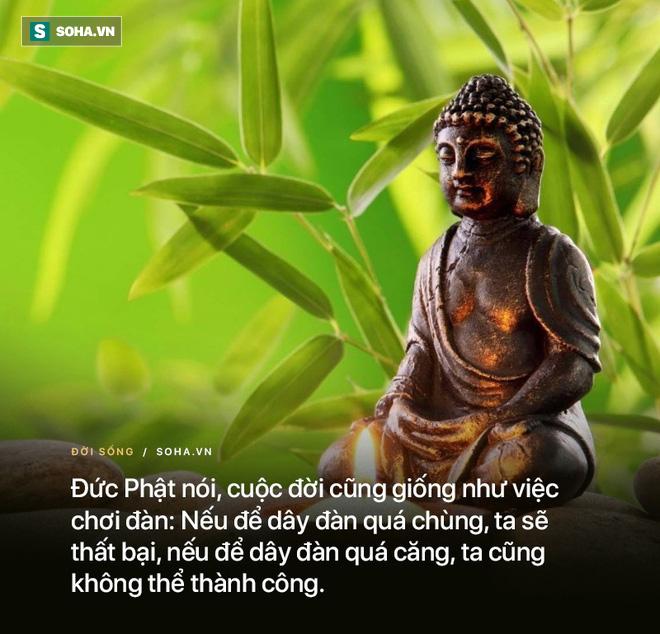 Nhất quyết làm sư, 6 tháng sau gặp chuyện: Đức Phật hỏi 3 câu khiến người đàn ông vỡ lẽ - ảnh 4