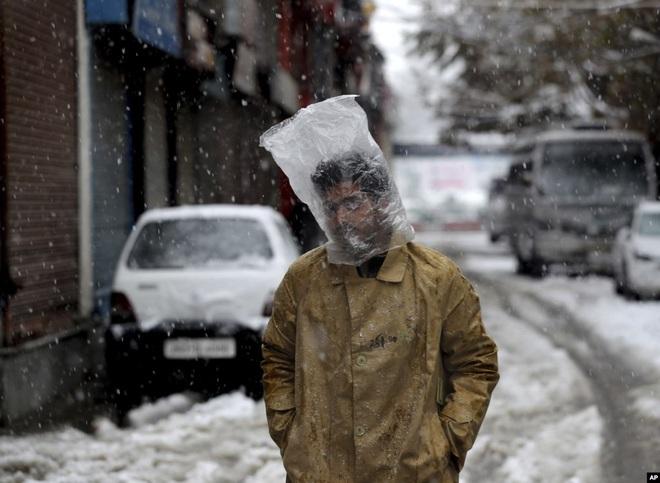 24h qua ảnh: Cua tuyết được bán với giá 46.000 USD ở Nhật Bản - ảnh 3
