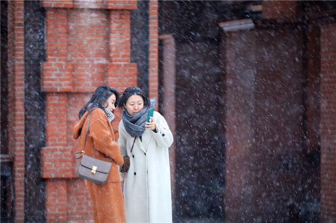 24h qua ảnh: Cua tuyết được bán với giá 46.000 USD ở Nhật Bản - Ảnh 1.