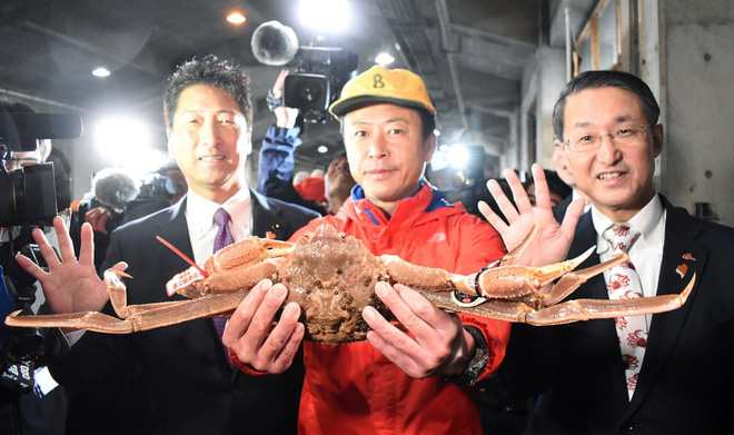 24h qua ảnh: Cua tuyết được bán với giá 46.000 USD ở Nhật Bản - Ảnh 2.