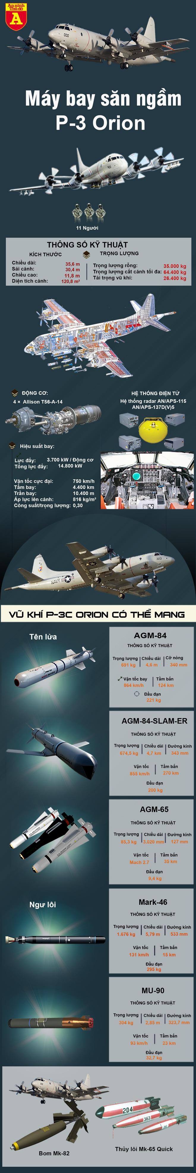 Máy bay trinh sát săn ngầm P-3F Iran đủ sức thổi tung chiến hạm Mỹ - Ảnh 2.