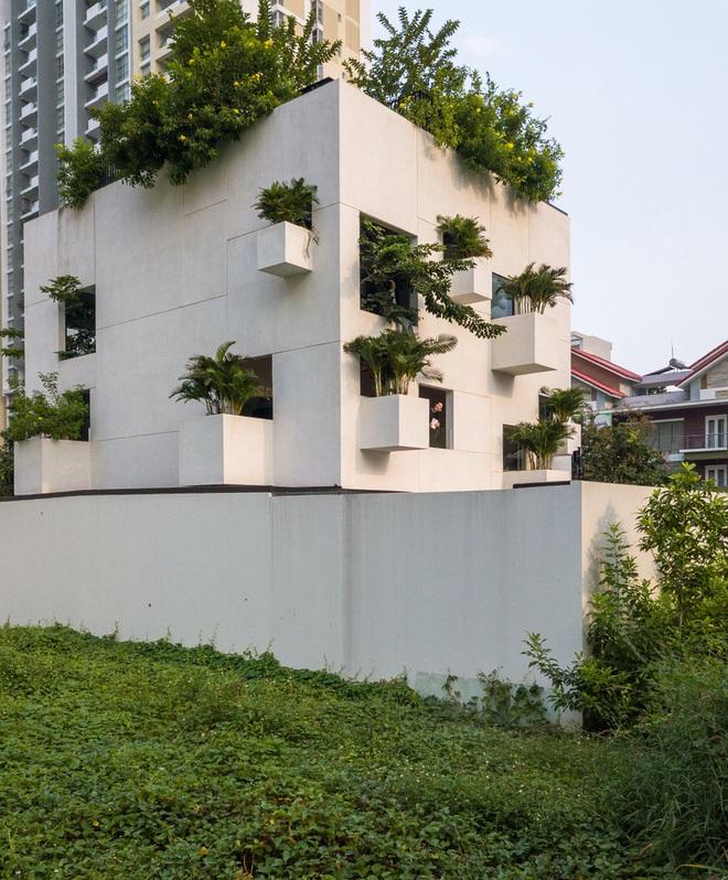 Ngôi nhà trên mây tại Sài Gòn trông như thế nào? - Ảnh 4.