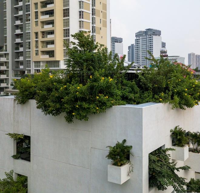 Ngôi nhà trên mây tại Sài Gòn trông như thế nào? - Ảnh 7.