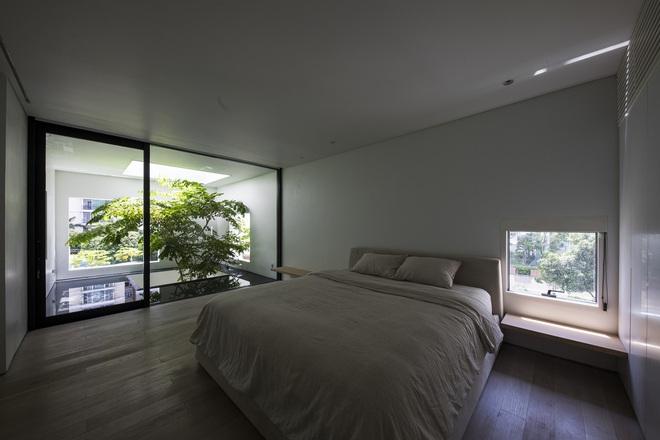 Ngôi nhà trên mây tại Sài Gòn trông như thế nào? - Ảnh 6.