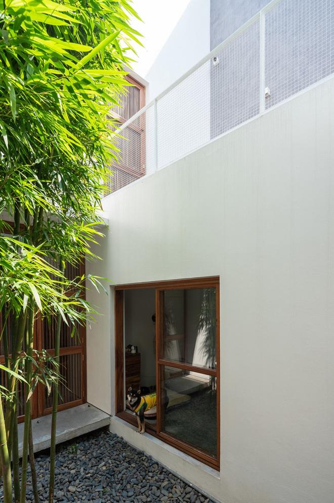 Độc đáo ngôi nhà với 3 mảnh sân tại Hà Nội trên báo Mỹ - Ảnh 10.