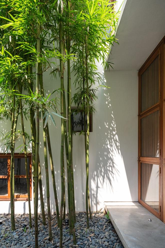Độc đáo ngôi nhà với 3 mảnh sân tại Hà Nội trên báo Mỹ - Ảnh 9.