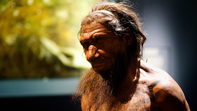Sóng thần tuyệt chủng: Những con số khổng lồ chứng minh Trái Đất đang trong cơn bạo bệnh - Ảnh 3.