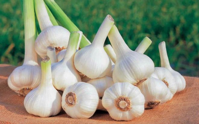 10 thực phẩm ngăn ngừa ung thư phổi hiệu quả - Ảnh 2.