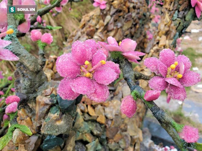 Mãn nhãn cây đào dáng huyền độc nhất Việt Nam, nặng 2 tấn ghép từ hàng nghìn viên đá quý  - Ảnh 12.