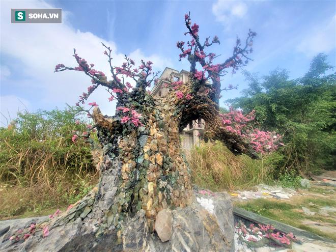 Mãn nhãn cây đào dáng huyền độc nhất Việt Nam, nặng 2 tấn ghép từ hàng nghìn viên đá quý  - Ảnh 1.